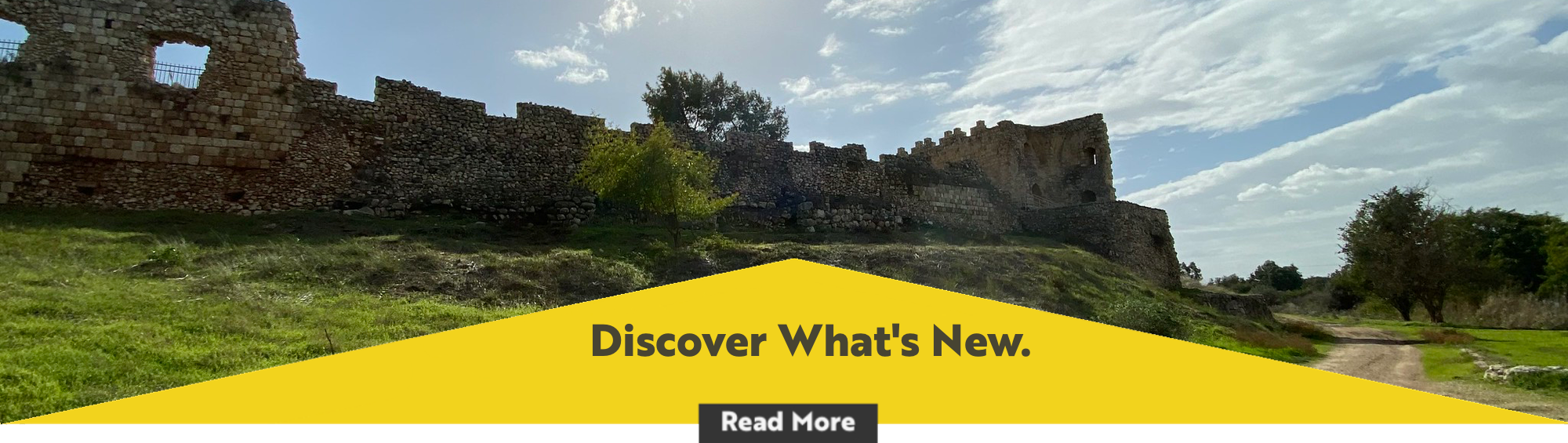 discover_whats_new